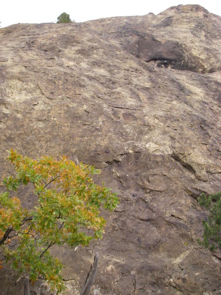 Rock Climbing Photo: Close up pic of the route.