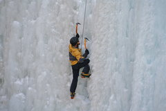 Rock Climbing Photo: Pick of the Vic, Ouray, WI4/5