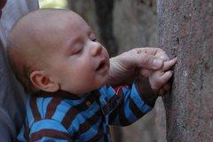 Rock Climbing Photo: Baby mono