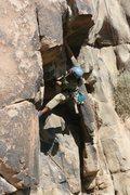 Rock Climbing Photo: Albert working on California Crack.