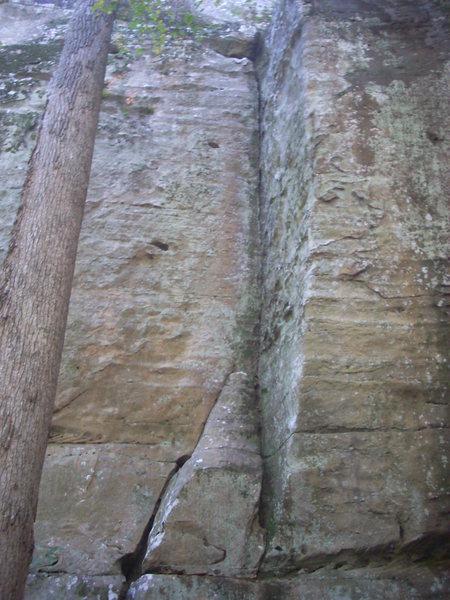 Rock Climbing Photo: Beaver Bones