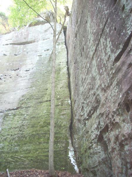 Climb...Duh.