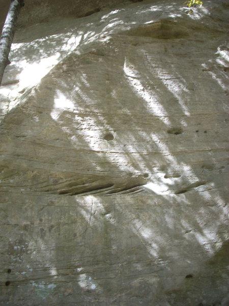 "Rock Climbing Photo: ""Hydraulic Hyena"" 5.12b sends the face t..."