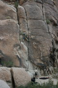 Rock Climbing Photo: Albert on The Mikado.