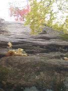 Rock Climbing Photo: Ol' Dirt Dogg, now clean