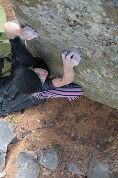 Rock Climbing Photo: lily crimping down on bretts problem