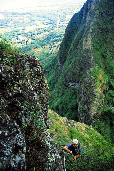 Rock Climbing Photo: Bushwack anyone?  A fun adventure though.