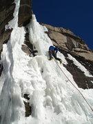 Rock Climbing Photo: Squid Baby........in January..