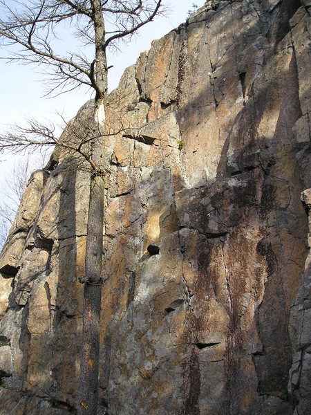 Unidentified tough routes at beginning of Bob's wall