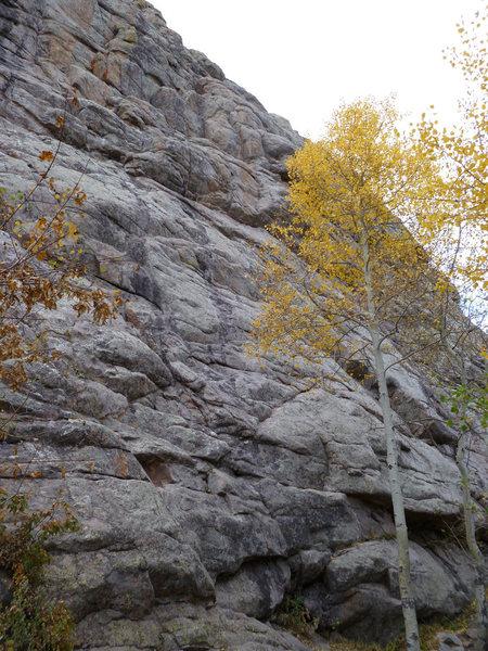 Rock Climbing Photo: The start is left of the aspen.