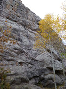 Rock Climbing Photo: The start is left of the aspen.