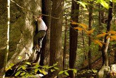 Rock Climbing Photo: The crux. Seth Hamel Photo.