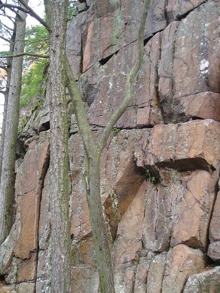 Rock Climbing Photo: cracks