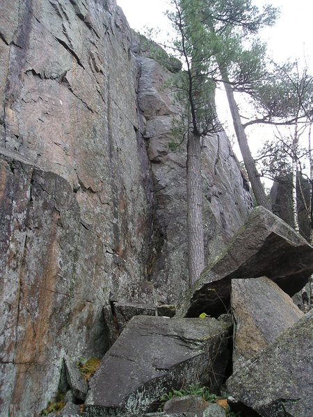 Route almost exactly behind left hand tree. Sponge Bob (5.7) is the dark streak inside the small dihedral just left of tree., Anchors at top.