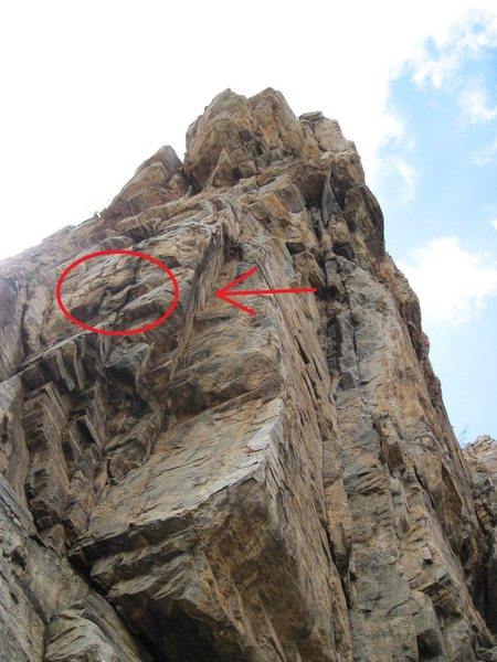 Rock Climbing Photo: Location of bee hive as of 10/27/10