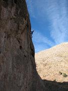 "Rock Climbing Photo: Praying Mantis: ""Uh, which way do I go?""..."