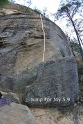 Rock Climbing Photo: pic of route
