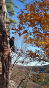 Rock Climbing Photo: Mark on a variation of Der Glotz. Start as per usu...