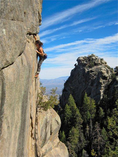 Rock Climbing Photo: Corina working a new route at the Mojo Wall.