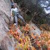 Heather battles invisible, fire-breathing gargoyles on the Cracker Jack / Dubya (W) walkoff ledge on the Crack Tree face.