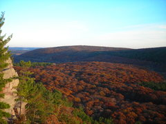 Rock Climbing Photo: A sea of brown tree tops.  This was the view at th...