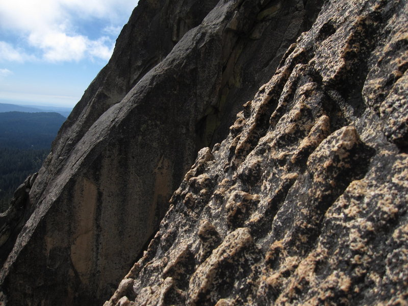 Rock Climbing Photo: Close up of some of the amazing chickenheads.