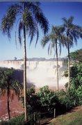 Rock Climbing Photo: Iguasu falls