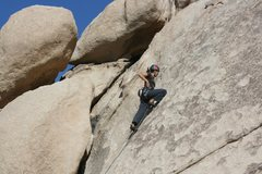 Rock Climbing Photo: Agina on Yucca Bowl.