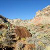 Dow checking out the barrel cactus on the approach.  Note the distinctive red boulders you will pass on the trail.