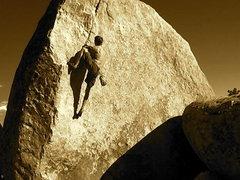 Rock Climbing Photo: classic curl