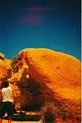 Rock Climbing Photo: saturday night live