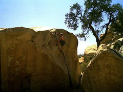 Rock Climbing Photo: false up 20