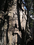 Rock Climbing Photo: Lots of cracks