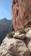 Rock Climbing Photo: Bear crawl traverse