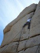 Rock Climbing Photo: Wild Wind