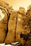 Rock Climbing Photo: knuckle cracker