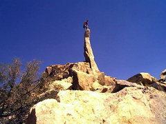 Rock Climbing Photo: aguille de joshua tree