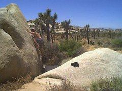 Rock Climbing Photo: jtree fiction