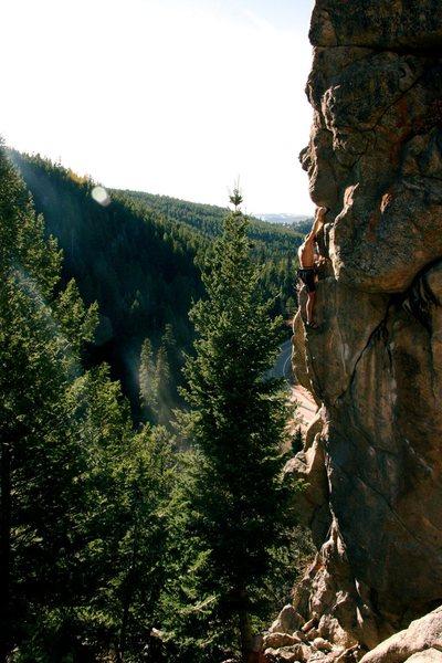 Rock Climbing Photo: Owl On The Prowl.