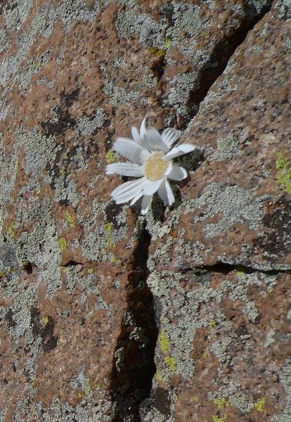 Rock Climbing Photo: Namesake