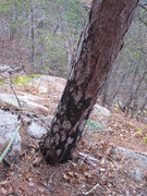 Rock Climbing Photo: The view down before the traverse across the strea...