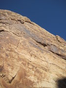 Rock Climbing Photo: Lance at the belay top of P1