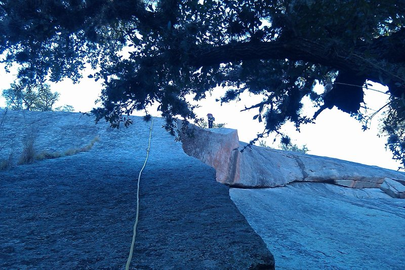 Rock Climbing Photo: Nikki at the anchors of P1 Walk in the High Countr...
