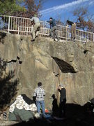 Rock Climbing Photo: Group top-out in the Boneyards.