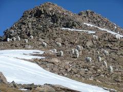 Rock Climbing Photo: Columbia 11/6/10 A crowded summit all to myself