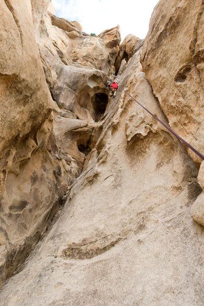 Rock Climbing Photo: Michael McKay climbs the classic Eye on Cyclops Ro...