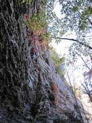 Rock Climbing Photo: This gives you an idea of how steep the route is. ...