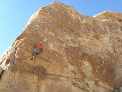 Rock Climbing Photo: Hatfields and McCoys