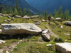 Rock Climbing Photo: Meadow trail