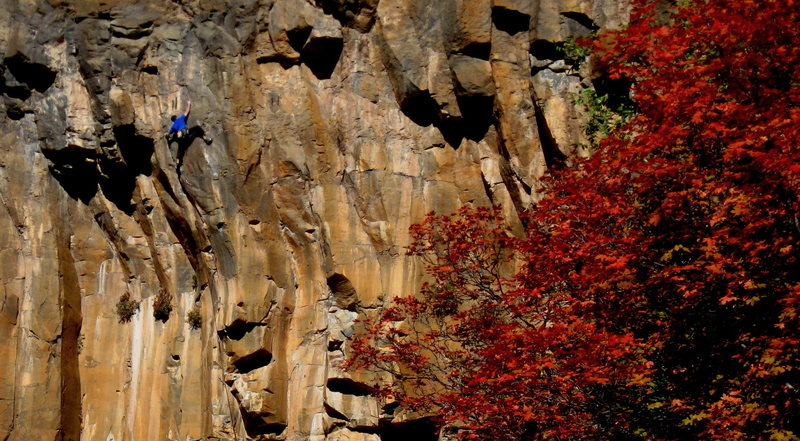 Rock Climbing Photo: Colin Cox on the 'all or nothing' redpoint crux of...